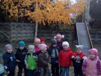 На прогулке (младшая группа)